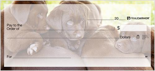 Labrador Retriever Checks