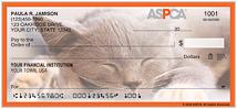 ASPCA Kittens Checks