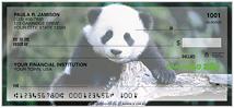 Pandas Checks
